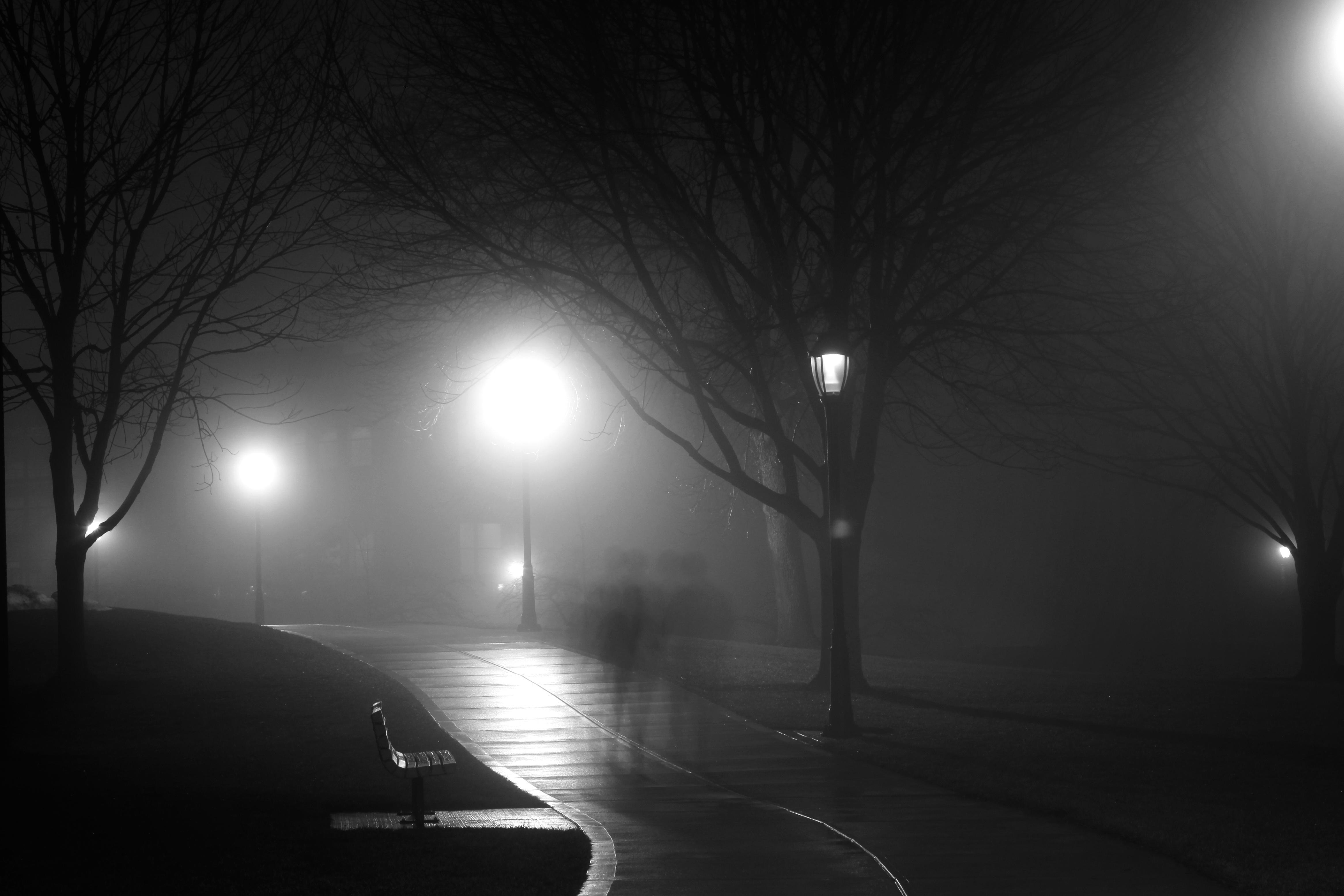 niebla_luz_ciudad_2